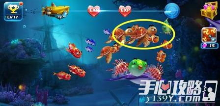 捕鱼王3捕鱼技巧汇总 四大鱼类打法详解
